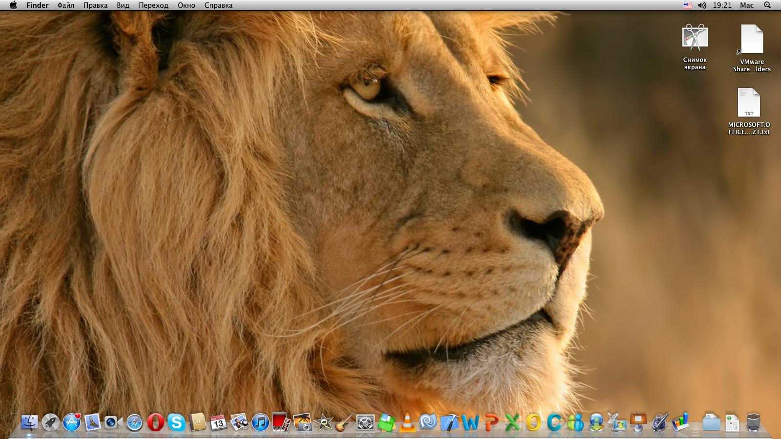 Le lion  Quilaztli un petit monde dhistoire